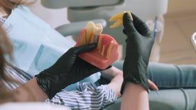Il dentista lento di medico dello steadicam della fucilazione del primo piano in guanti medici sterili tiene un modello fittizio  video d archivio