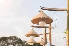 Il des lampes sont tissés du bambou Image stock