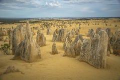 Il deserto dei culmini dall'Australia fotografia stock
