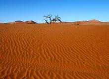Il deserto dei vostri sogni Fotografia Stock