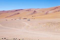 Il deserto di Atacama, Cile Fotografie Stock Libere da Diritti