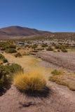 Il deserto di Atacama nel Cile Immagine Stock