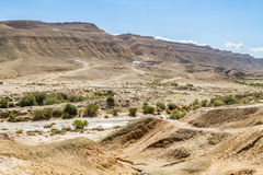 Il deserto di Negev Fotografia Stock Libera da Diritti