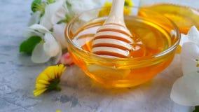 il dessert fresco della ciliegia del miele sboccia movimento lento di gocciolamento stock footage