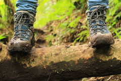 Il dettaglio degli stivali fangosi nel modo alle tre cascate perse fa un'escursione negli altopiani vicino a boquete, Panama Immagine Stock