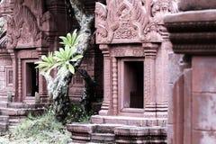 Il dettaglio del tempio buddista antico in Tailandia con i rossi carmini ha ornato la parete immagine stock libera da diritti