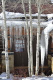 Il dettaglio della cabina del ` s di Allie, Beaver Creek, Vail ricorre, Avon, Colorado fotografia stock libera da diritti