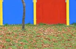 Il dettaglio della stagione di caduta con le foglie cadute Immagini Stock