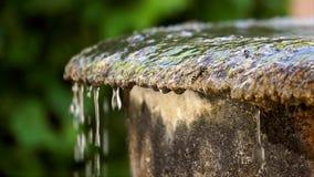 Il dettaglio della vespa sopra l'acqua trabocca da una fontana di pietra e cade lentamente, quindi la mosca della vespa via, movi stock footage
