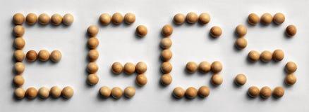 Il ` di legno di arte di parola della puntina Eggs il ` immagini stock libere da diritti