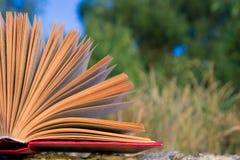 Il diario aperto del libro della libro con copertina rigida, pagine smazzate sulla natura vaga atterra Fotografia Stock
