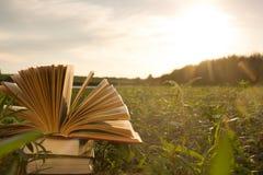 Il diario aperto del libro della libro con copertina rigida, pagine smazzate sulla natura vaga atterra Immagine Stock Libera da Diritti
