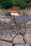 Il diario aperto del libro della libro con copertina rigida, pagine smazzate sulla natura vaga atterra Immagini Stock