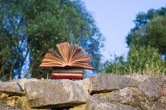 Il diario aperto del libro della libro con copertina rigida, pagine smazzate sulla natura vaga atterra Fotografie Stock