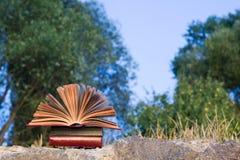 Il diario aperto del libro della libro con copertina rigida, pagine smazzate sulla natura vaga atterra Immagini Stock Libere da Diritti