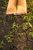 Il diario aperto del libro della libro con copertina rigida, pagine smazzate sulla natura vaga atterra Immagine Stock