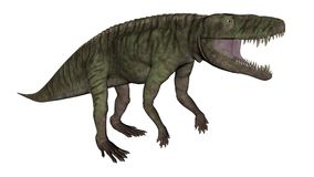 Il dinosauro di Batrachotomus che rugge -3D rende Fotografie Stock