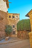 Il discendente di Bush bruciante in st Catherine Monastery, Sinai, per esempio fotografia stock