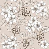 Il disegno passa i fiori e le bacche modello senza cuciture Modello senza cuciture di estate sveglia con i fiori e lo shadberry d illustrazione di stock