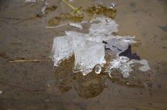 Il disgelo Immagine Stock