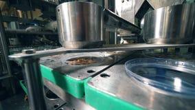 Il dispositivo del metallo riempie i recipienti di plastica di cracker asciutti del pane ad una fabbrica stock footage