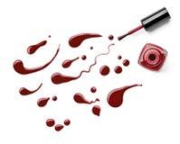 Il dito dello smalto compone il cosmetico di bellezza Fotografia Stock