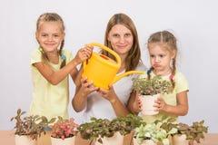 Il divertimento e la mamma e la figlia divertenti hanno innaffiato i fiori Fotografia Stock