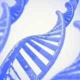 Il DNA incaglia il modello 3D Immagini Stock
