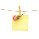 Il documento ed il colore rosa sono aumentato con la spina di vestiti. Serie immagini stock