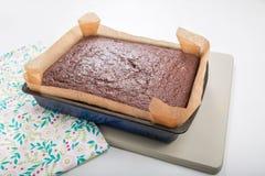 Il dolce del pan di zenzero in latta ha allineato con il bordo di verde della carta del silicone Fotografie Stock Libere da Diritti