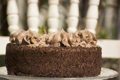 Il dolce di TChocolate decora con i grandi riccioli di cioccolato raso confinato con panna montata fotografie stock