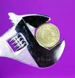 Il dollaro viola Immagini Stock