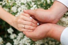 Il donne à son amie une bague de fiançailles dans le jardin botanique Image stock