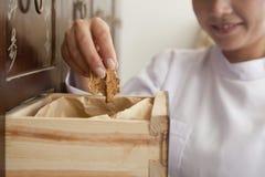 Il dottore Taking Herb Used per la medicina di cinese tradizionale da un cassetto Fotografia Stock Libera da Diritti