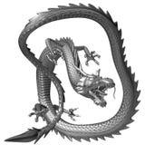 Il drago d'argento, illustrazione 3D Fotografia Stock