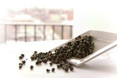 Il drago del gelsomino strappa le foglie di tè Fotografia Stock