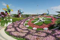 IL DUBAI, EMIRATI ARABI UNITI - 8 DICEMBRE 2016: Il giardino di miracolo del Dubai è il più grande giardino floreale naturale nel Fotografie Stock