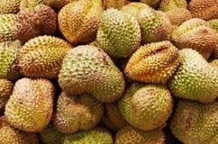 Il Durian fruttifica priorità bassa fotografia stock libera da diritti