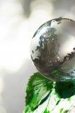 Il eco di concetto del globo Fotografia Stock Libera da Diritti
