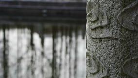Il eflection della foresta in acqua, colonne del ponte al cortile fa il giardinaggio stock footage