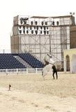 Il Equestrian effettua il 23 marzo 2012 in Bahrain immagine stock libera da diritti
