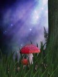 Il Fairy curva Immagini Stock