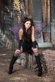 Il Fairy si distende fotografie stock