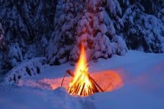 Il falò nella foresta dell'inverno illumina la neve immagini stock