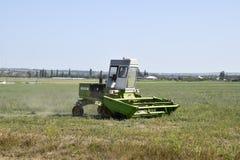 Il falciatore nel campo falcia l'erba per fieno Immagine Stock