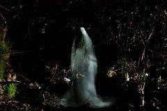Il fantasma fotografia stock libera da diritti