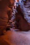 Il fantasma del canyon dell'antilope Fotografia Stock