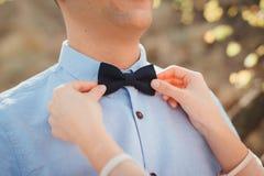 Il farfallino del ` s dello sposo della riparazione della sposa Fotografia Stock Libera da Diritti