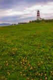 Il faro storico di Alnes in Alesund Fotografia Stock Libera da Diritti