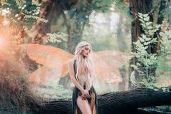 Il fatato reale dalle storie magiche, dea della natura con le ali trasparenti sole in foresta densa, bellezza chiude i suoi occhi fotografia stock libera da diritti